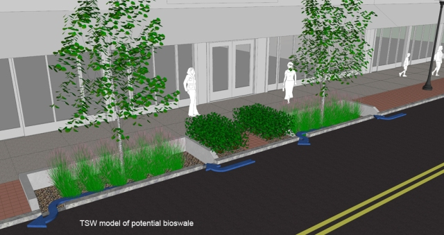 "TSW bioswale2 Juniper Street Could Emerge as Atlanta's First ""Green Street"" Uncategorized  TSW   TSW"